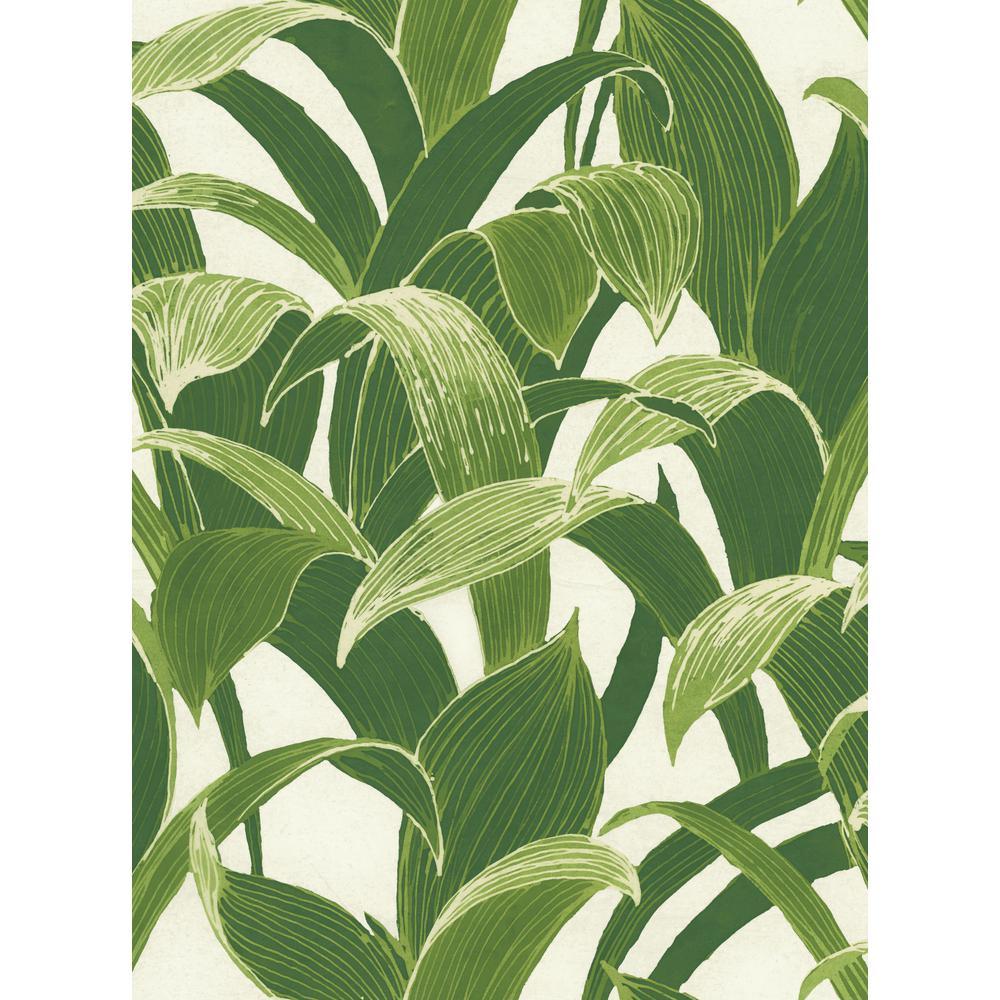 Banana Groves Peel and Stick Wallpaper