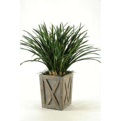 Indoor Green Areca Grass in Weathered Wooden Planter Box