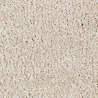 Carpet Sample - Mason II - Color Corinthian Texture 8 in. x 8 in.