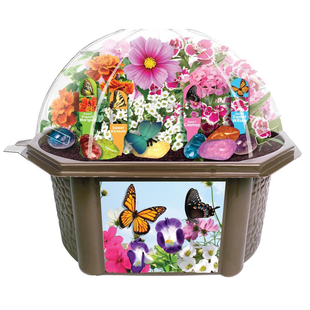 Biosphere Clear Plastic Bountiful Butterfly Garden Indoor Garden Terrarium Indoor Garden Seed Starter Kit