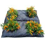 GardenMat 24 in. Square Garden Bed Hydration Mat for Multiple Plants (Twin Pack)