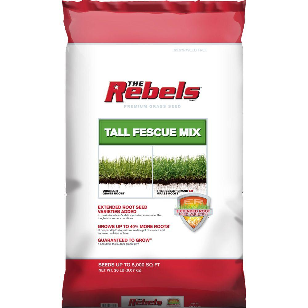 The Rebels 20 lbs. Tall Fescue Grass Seed PCG Mix