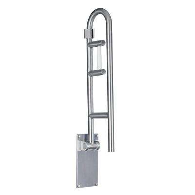 30 in. x 1-1/4 in. Flip-up Screw Grab Bar with Paper Holder in Peened Stainless Steel