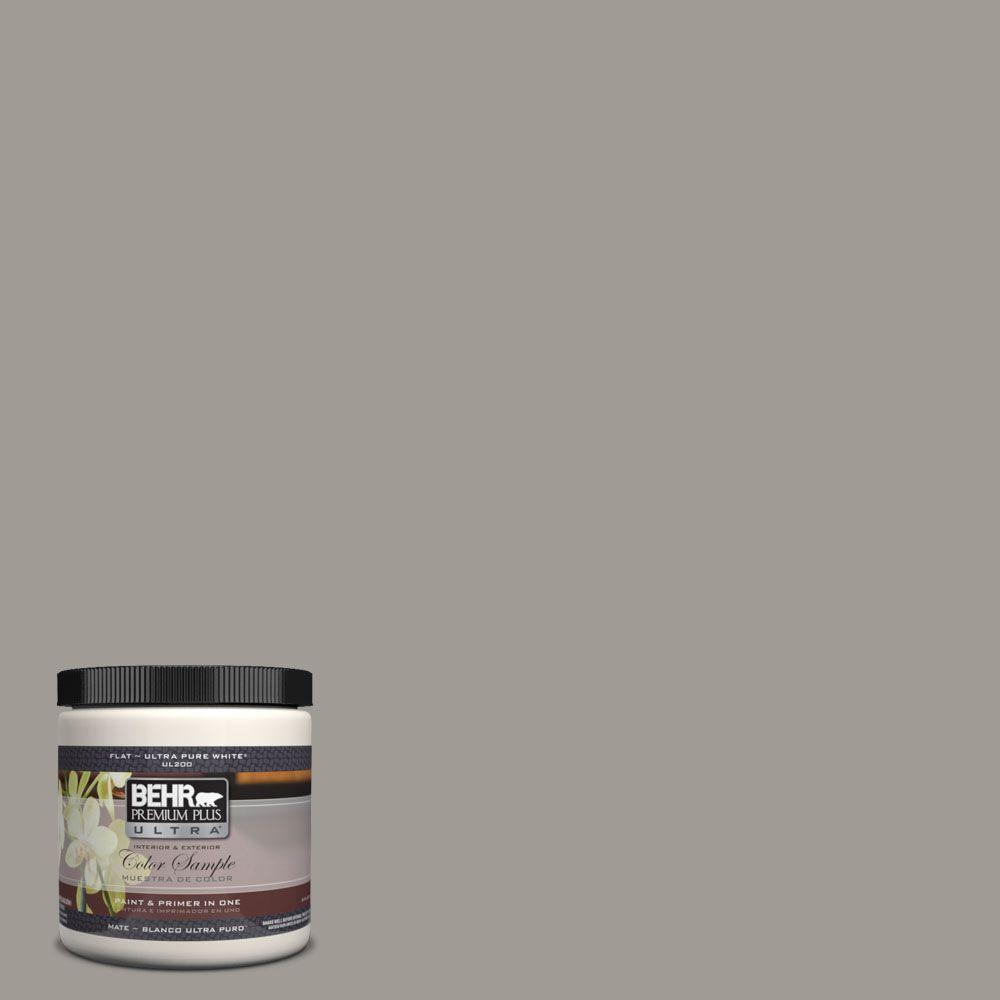 Ul260 6 Fashion Gray Matte Interior Exterior Paint And Primer In One Sample