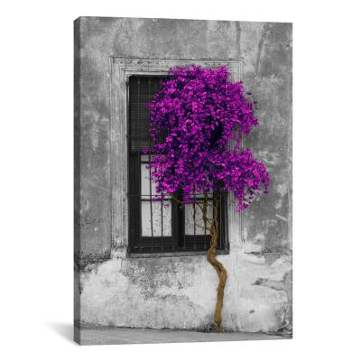 """Tree in Front of Window Purple Pop Color Pop"" by Panoramic Images Canvas Wall Art"