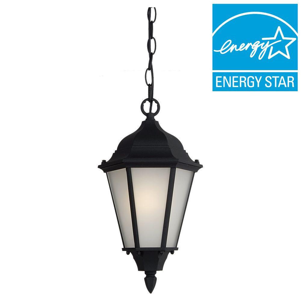 Sea Gull Lighting Bakersville 1-Light Outdoor Hanging Black Pendant Fixture