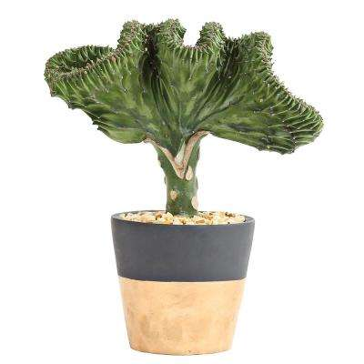 Coral Cactus in 4 in. Flare Turbulence Gray Pot