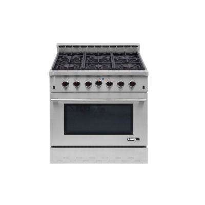 Entree 36 in. 5.5 cu. ft. Professional Style Gas Range with Convection Oven in Stainless Steel