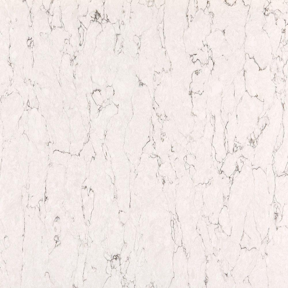 Silestone 2 in  x 4 in  Quartz Countertop Samples in White Arabesque