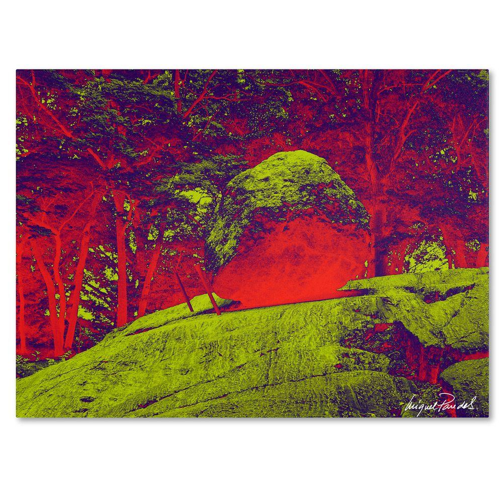 14 in. x 19 in. Enchanted Rock I Canvas Art
