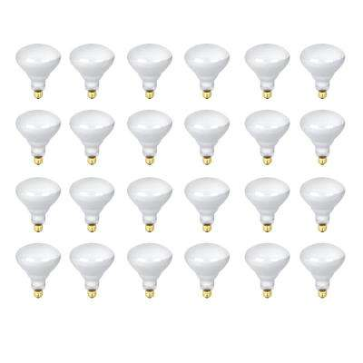 300-Watt Soft White (2700K) R40 Dimmable Incandescent 12-Volt Pool and Spa Flood Light Bulb (24-Pack)