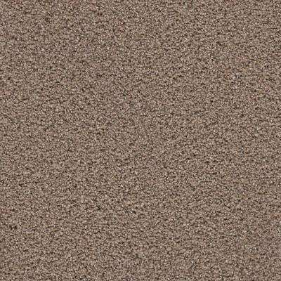 Carpet Sample - Elite II - Color Bradley Texture 8 in. x 8 in.