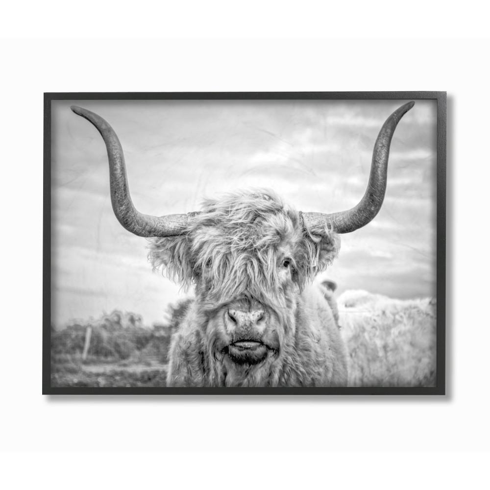 11 in x 14 in black and white highland cow photograph by joe reynolds printed framed wall art