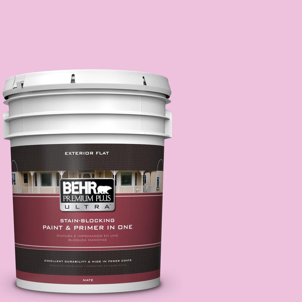 5-gal. #P120-1 Starlet Pink Flat Exterior Paint