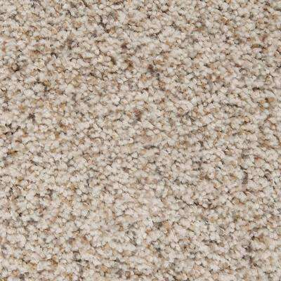 Carpet Sample - Riley II - Color Memoir Textured 8 in. x 8 in.