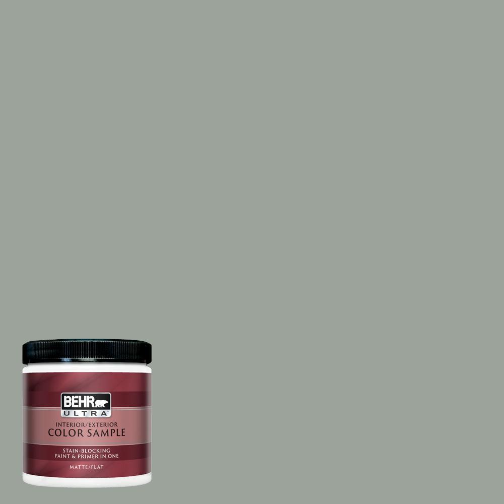 Sage Gray Matte Interior Exterior Paint