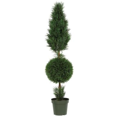 Indoor and Outdoor 5 ft. Cypress Ball and Cone Silk Tree with Planter