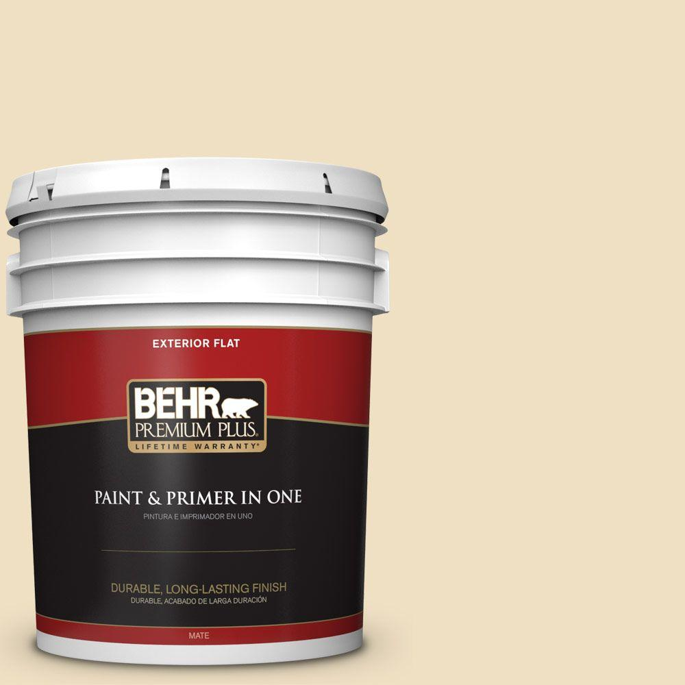 Home Decorators Collection 5-gal. #HDC-NT-17 New Cream Flat Exterior Paint