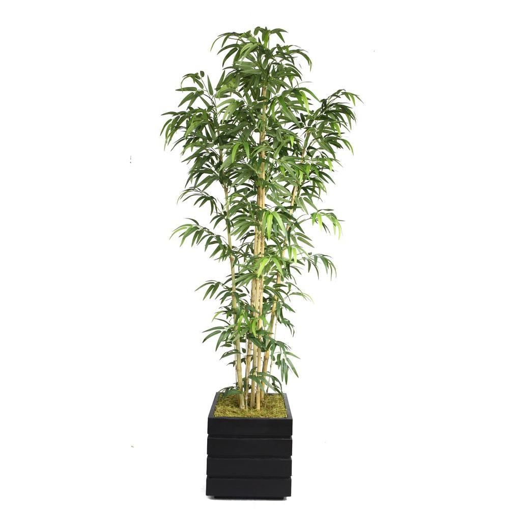Laura Ashley 78 in. Tall Natural Bamboo Tree in 14 in. Fi...