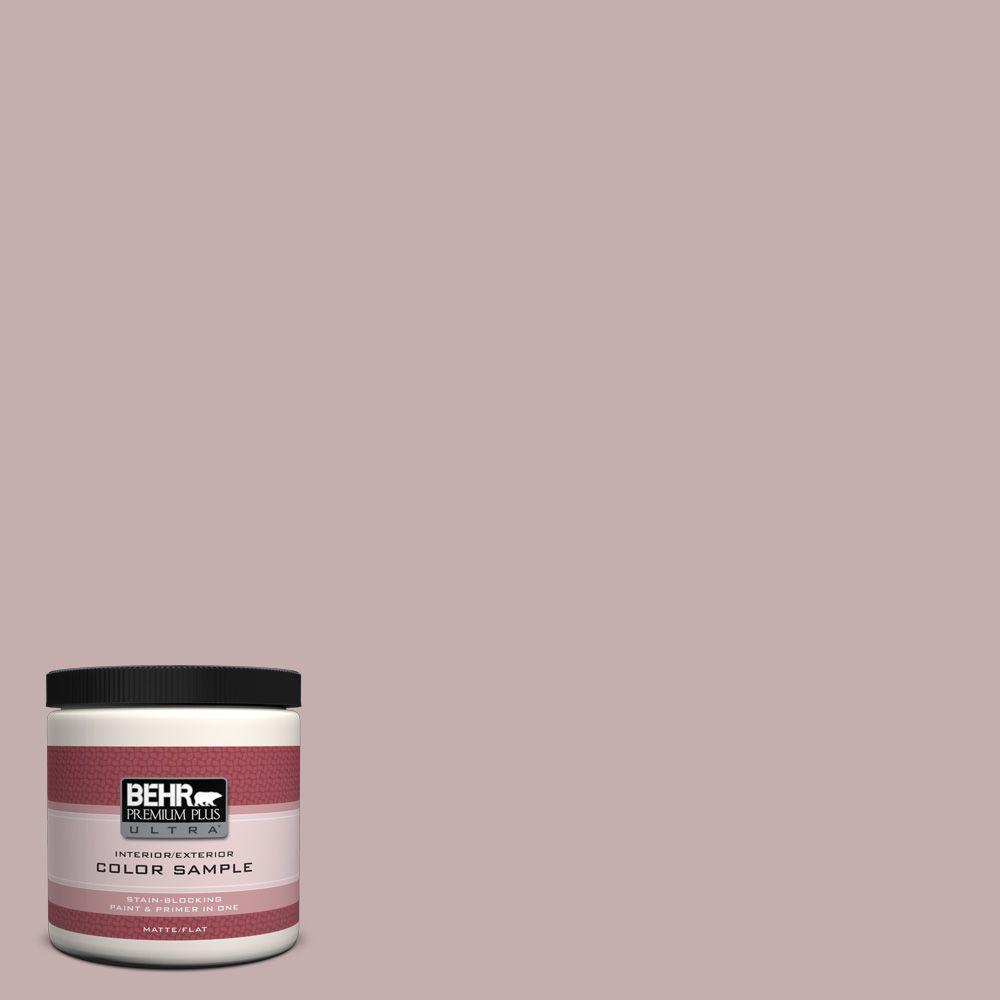 BEHR Premium Plus Ultra 8 oz. #120E-3 Subdued Hue Interior/Exterior Paint Sample