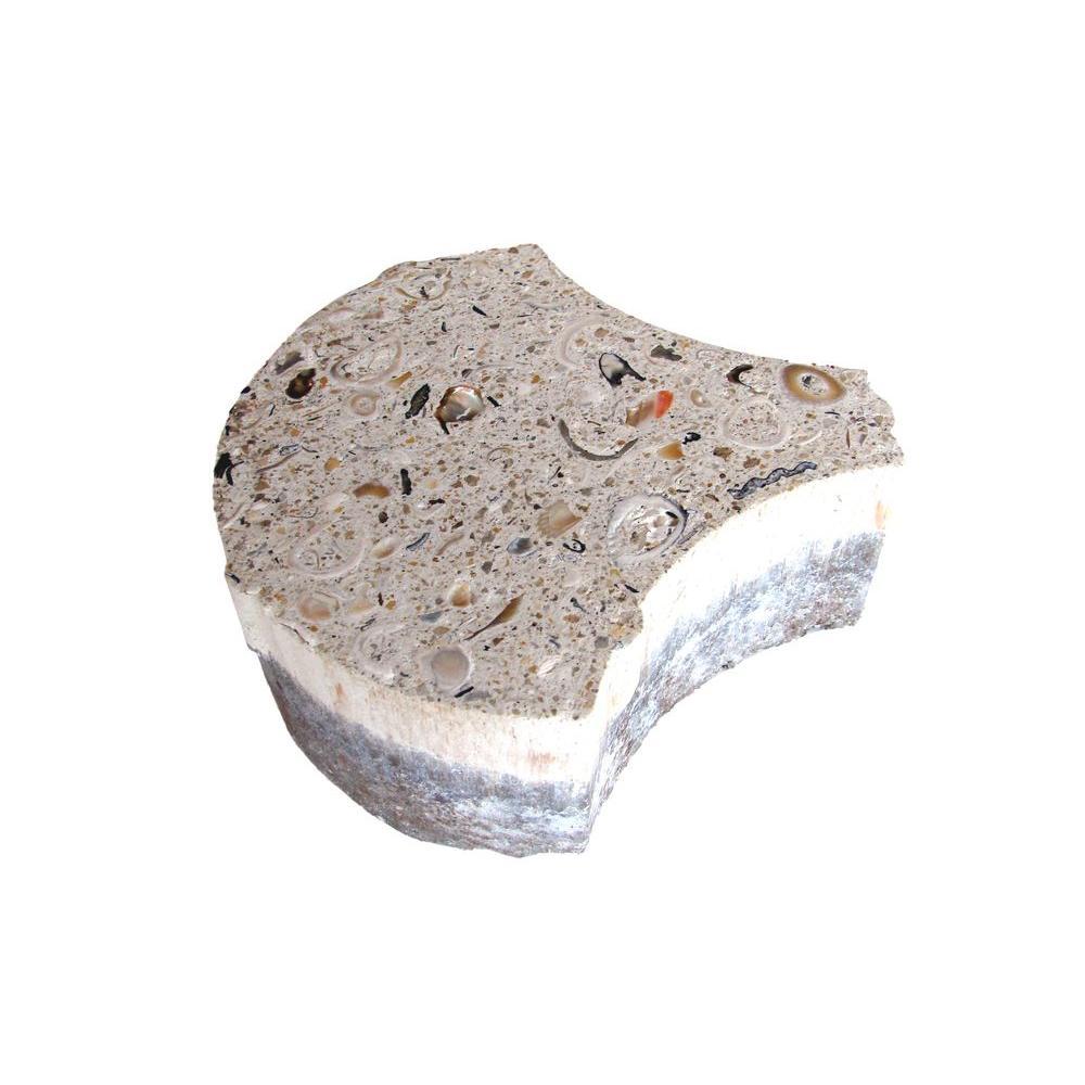 6 in. x 2 3/8 in. Key West Shell Paver Bone