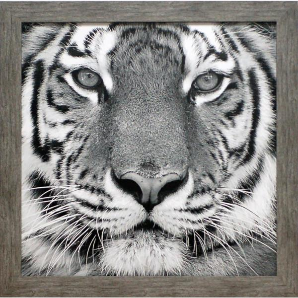 28 in. x 28 in. Tiger Wildlife Lodge Printed Framed Wall