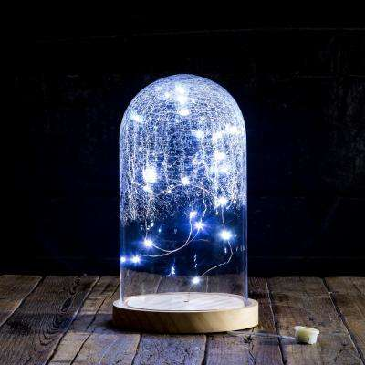 9.5 in. Crackled String Light Cloche