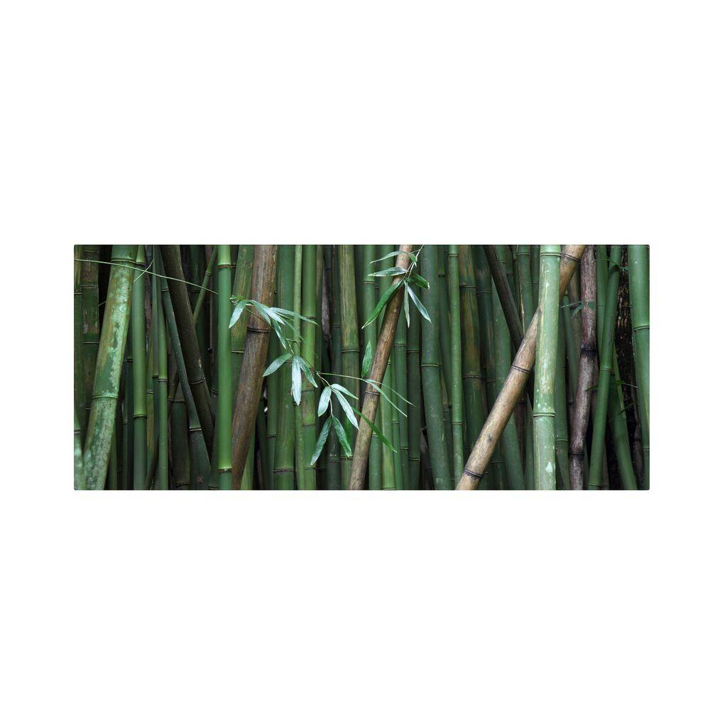 14 in. x 32 in. Bamboo Canvas Art
