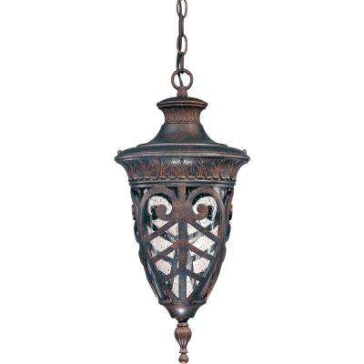 1-Light Outdoor Dark Plum Bronze Incandescent Ceiling Light