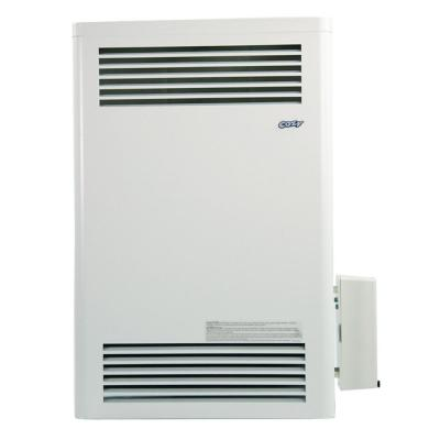 15,000 BTU Direct-Vent Natural Gas Wall Furnace with Pilot Pro Battery-Ignition Pilot System
