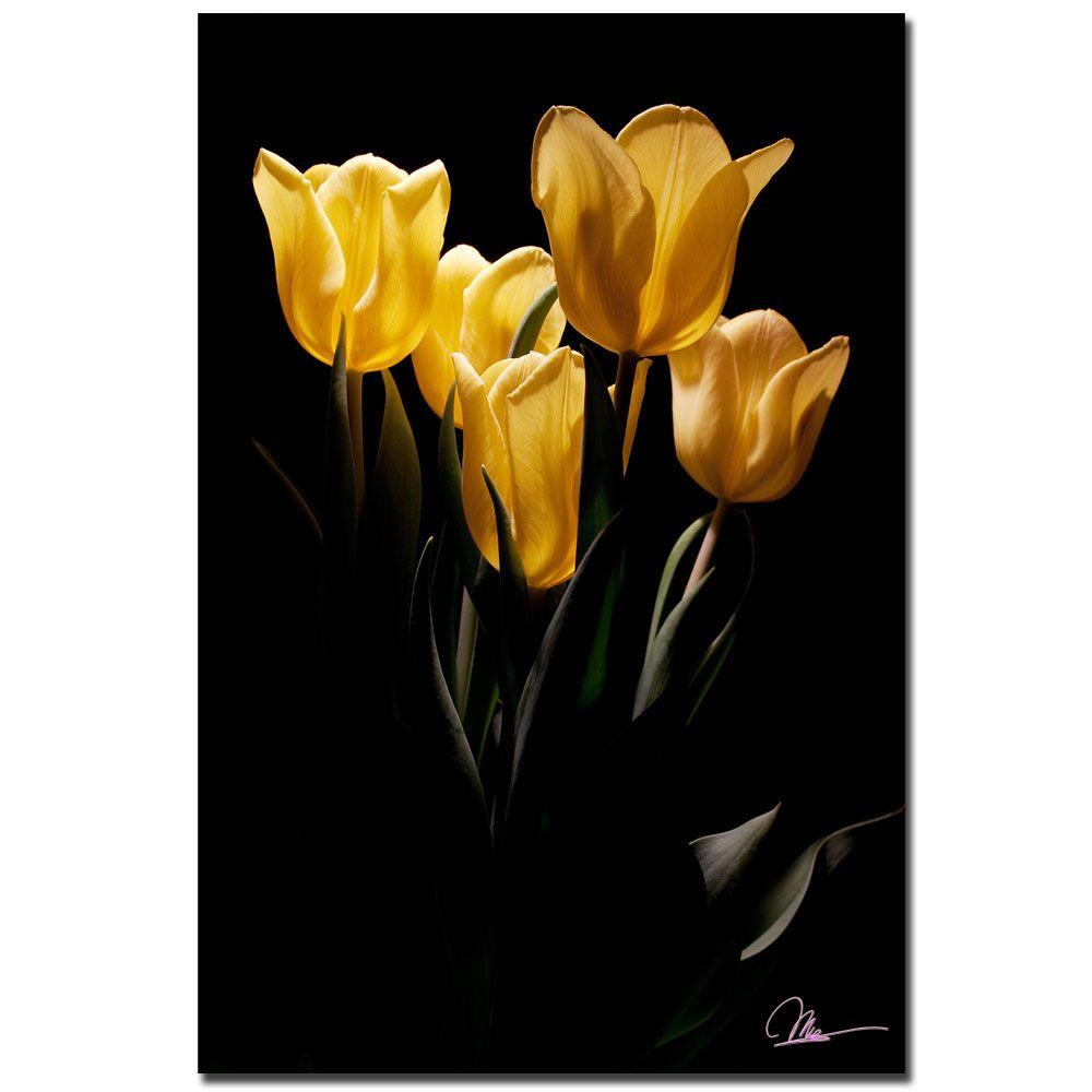 24 in. x 16 in. Yellow Blooms III Canvas Art
