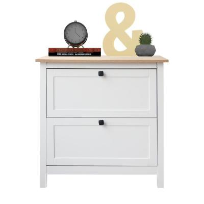 30 in. W x 30 in. H x 20 in. D White 2-Drawer File Cabinet
