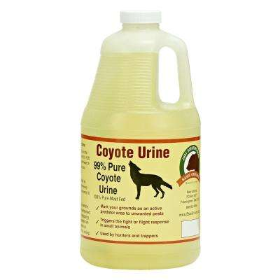 Coyote Urine by Bare Ground