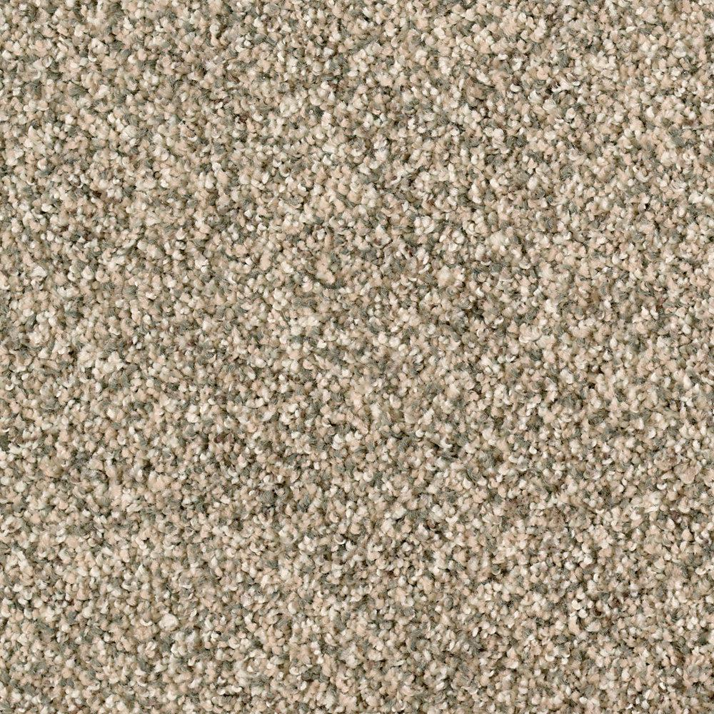 Carpet Sample - Briarmoor II - Color Chalet Texture 8 in.