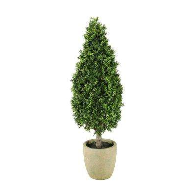 Chandler 6 ft. Topiary