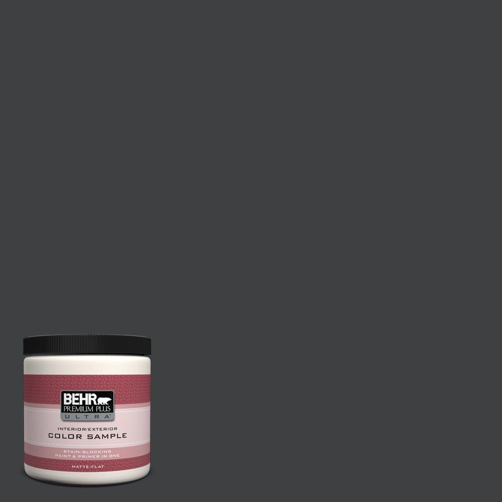BEHR Premium Plus Ultra 8 oz. #BXC-02 Bauhaus Interior/Exterior Paint Sample