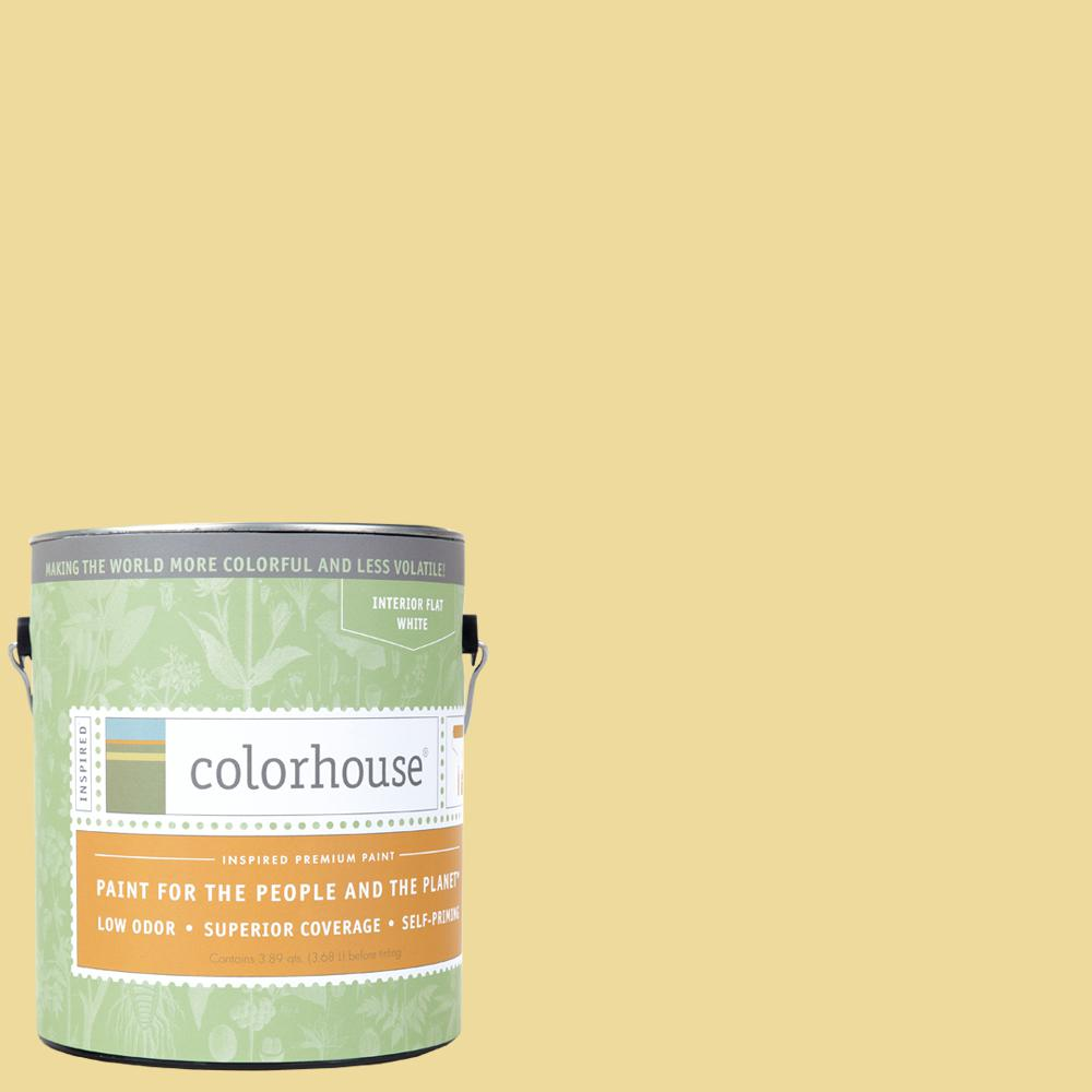 Colorhouse 1 gal. Aspire .03 Flat Interior Paint-481138 - The Home Depot