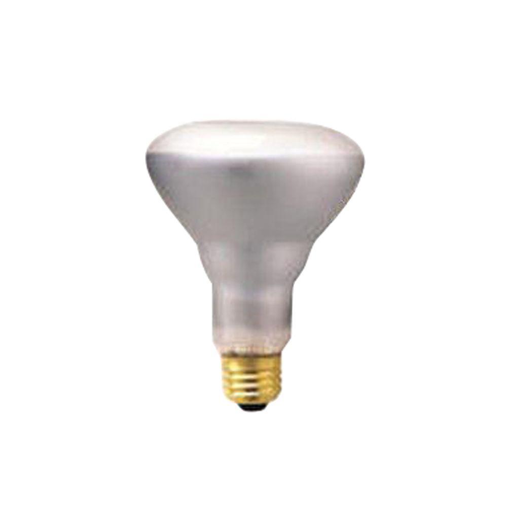 Bulbrite 65-Watt Incandescent BR30 Light Bulb (10-Pack)