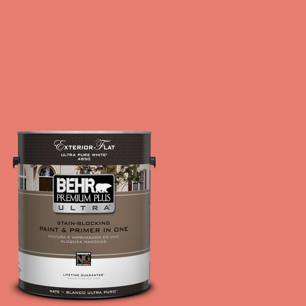 1 gal. #HDC-SM14-12 Cosmic Coral Flat Exterior Paint