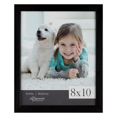 6-Opening 11 in. x 14 in. Picture Frame