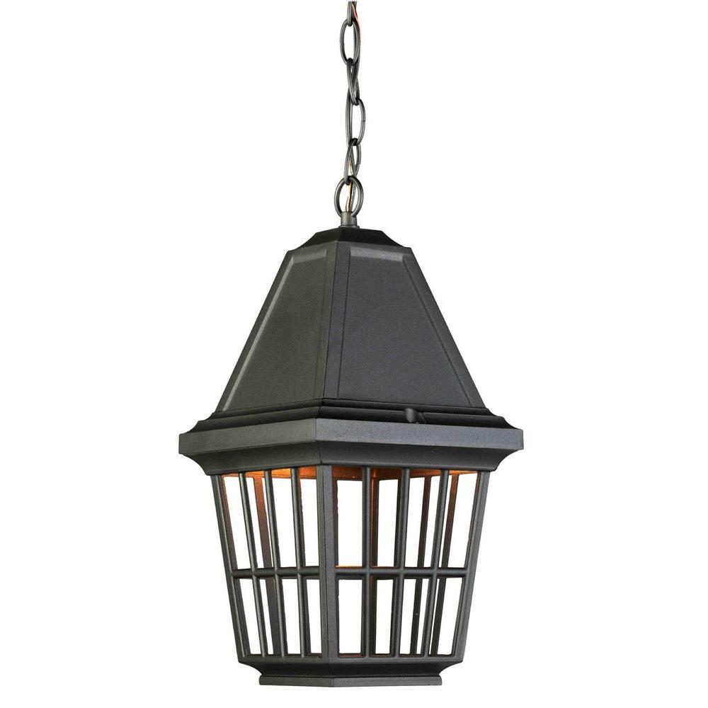 Godiva 1-Light Black Outdoor Pendant