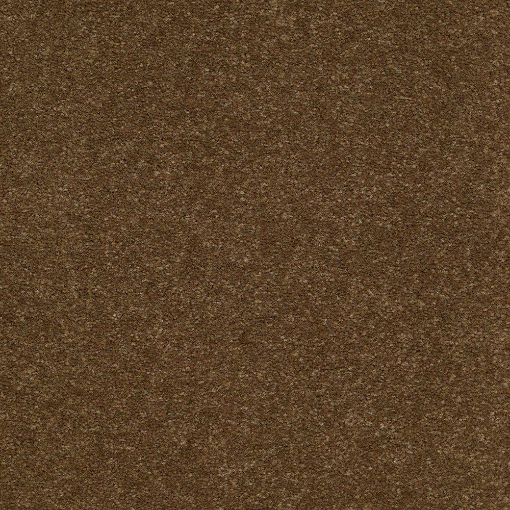 Platinum Plus Enraptured I - Color Beechnut 12 ft. Carpet