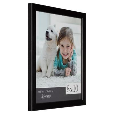 6-Opening 8 in. x 10 in. Picture Frame