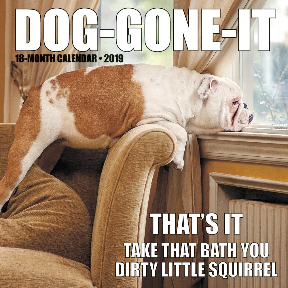 2019 Dog-Gone-It Wall Calendar
