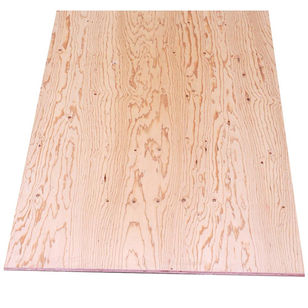 Sheathing Plywood (Common: 3/8 in  x 4 ft  x 8 ft