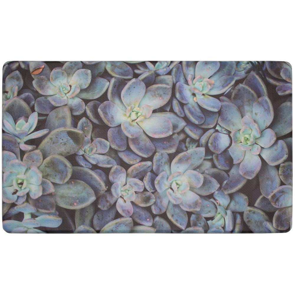 Chef Gear Ethereal Succulents 30 In X 18 In Gelness