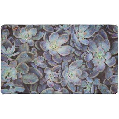 Ethereal Succulents 30 in. x 18 in. Gelness Kitchen Mat