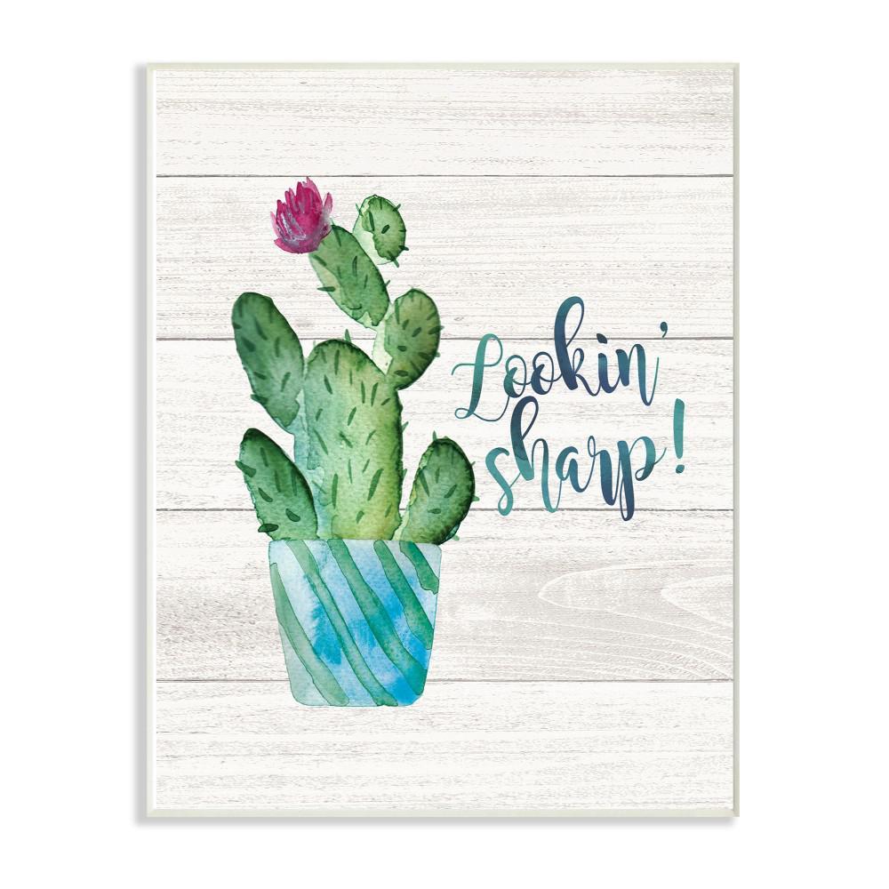 Baby Cactus Succulents Lookin Sharp