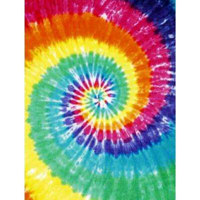 Fun Time Colorburst Multi Colored 19 in. x 29 in. Area Rug