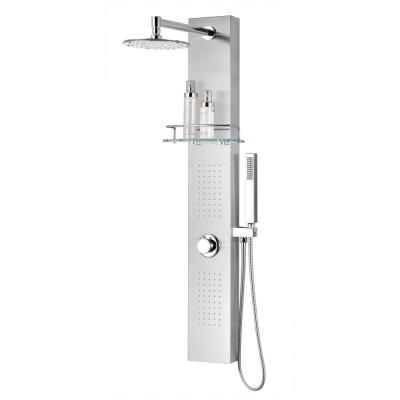 Pioneer 44 in. 2-Jet Shower Panel System with Heavy Rain Shower and Spray Wand in Brushed Steel